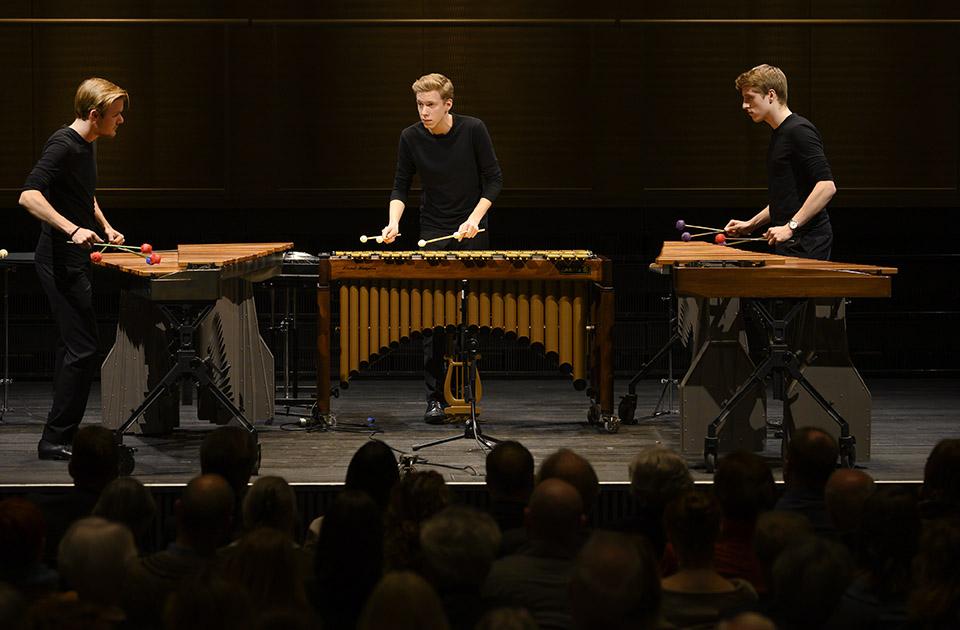 Colores Trio (v.l.n.r.): Fabian Ziegler (Stipendiat Rahn Kulturfonds), Matthias Kessler und Luca Staffelbach